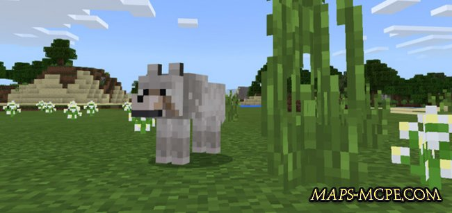 Мод More Wolves 1.1.2